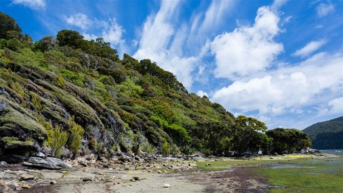 Stewart Island is one of New Zealand's still unexplored places