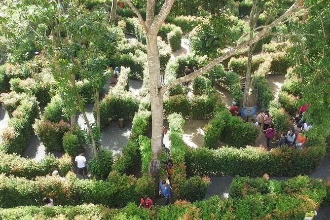 A-Maze Garden