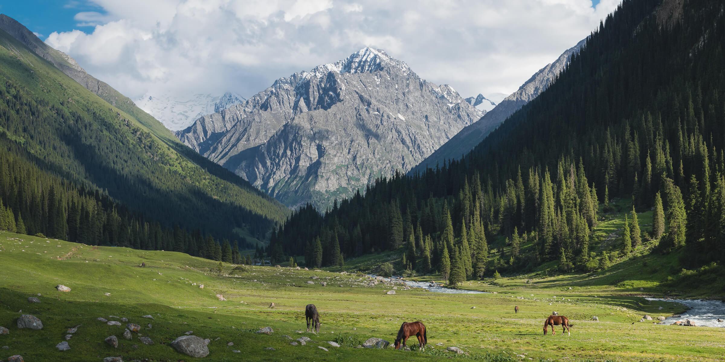 altyn arashan hot springs near issyk kul kyrgyzstan