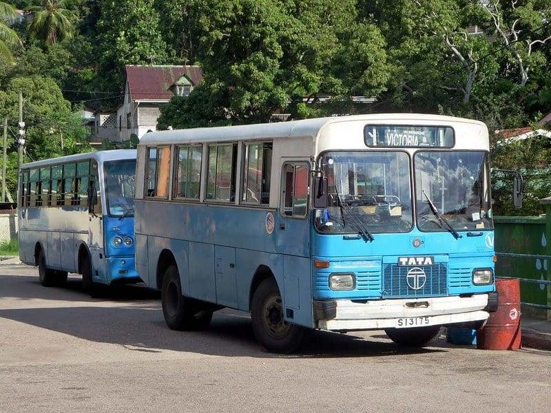 Is public transportation in Seychelles safe