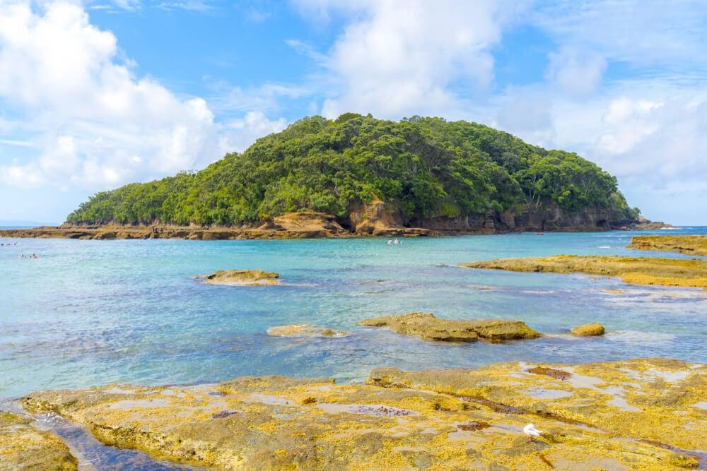 Visit Goat Island