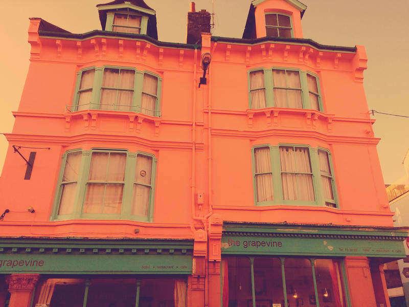 The Grapevine, Brighton