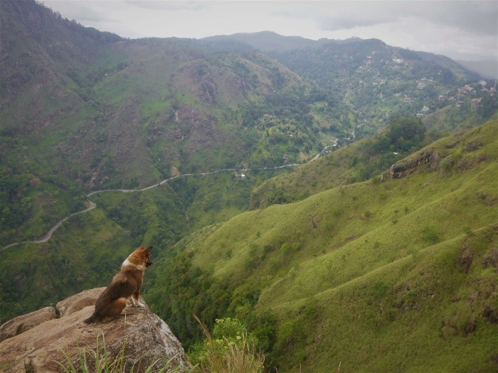 Ella: my coolest place to stay in Sri Lanka