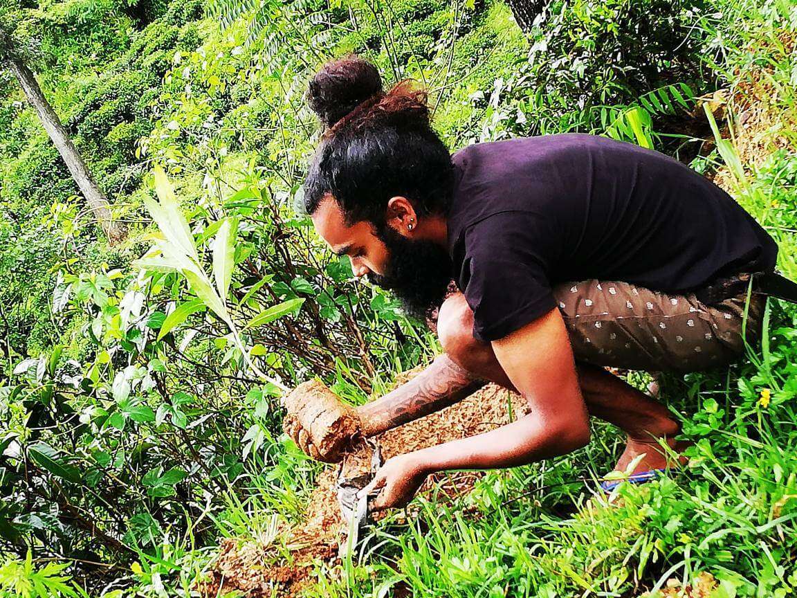 Planting trees in Ella, my favourite of Sri Lanka's travel places