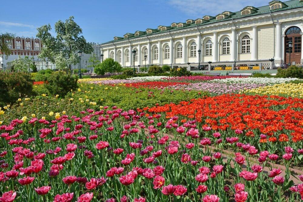 The Alexander Garden