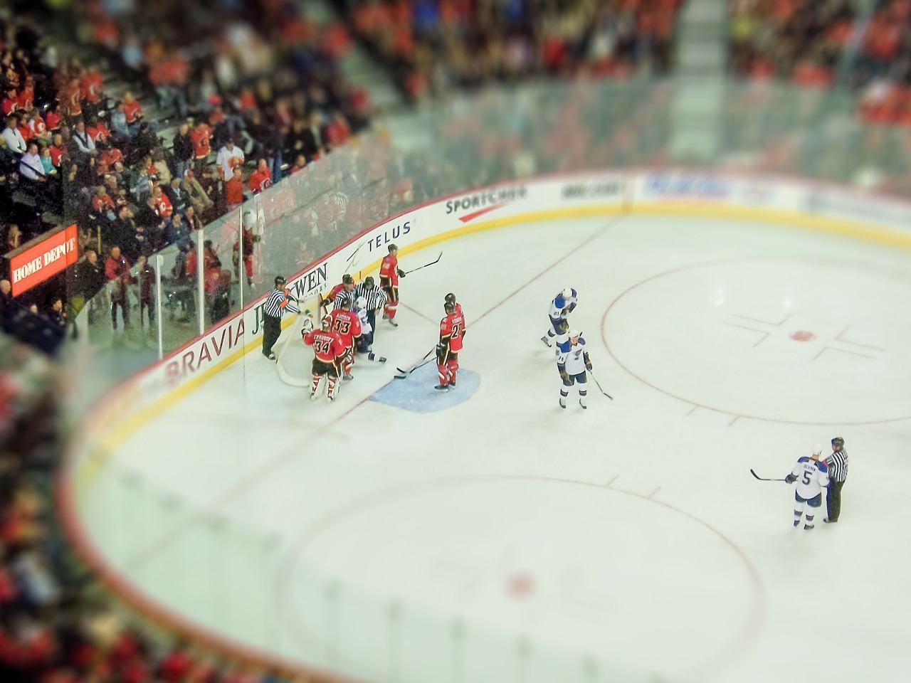 Calgary sports