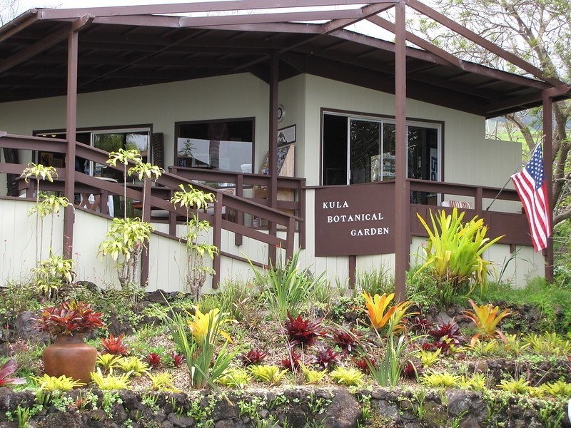 Kula Botanical Gardens, Maui