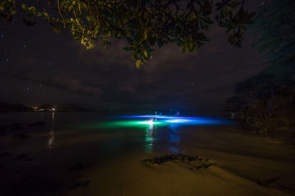 Glow stand up paddle boarding in Maui