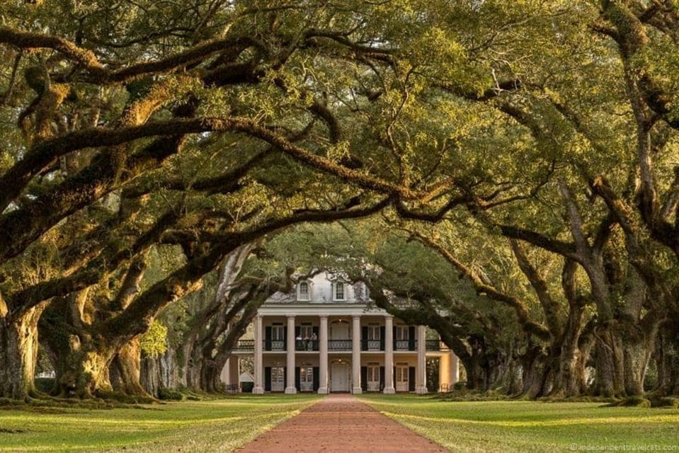 Most well-known plantation in New Orleans, Oak Alley Plantation.