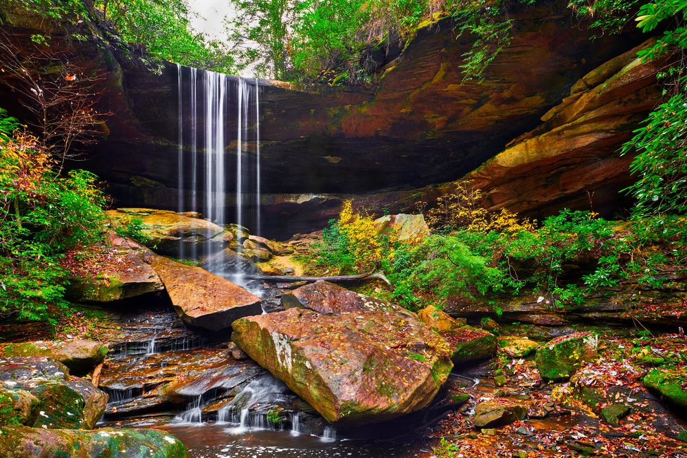 Explore the trails in Daniel Boone National Forest