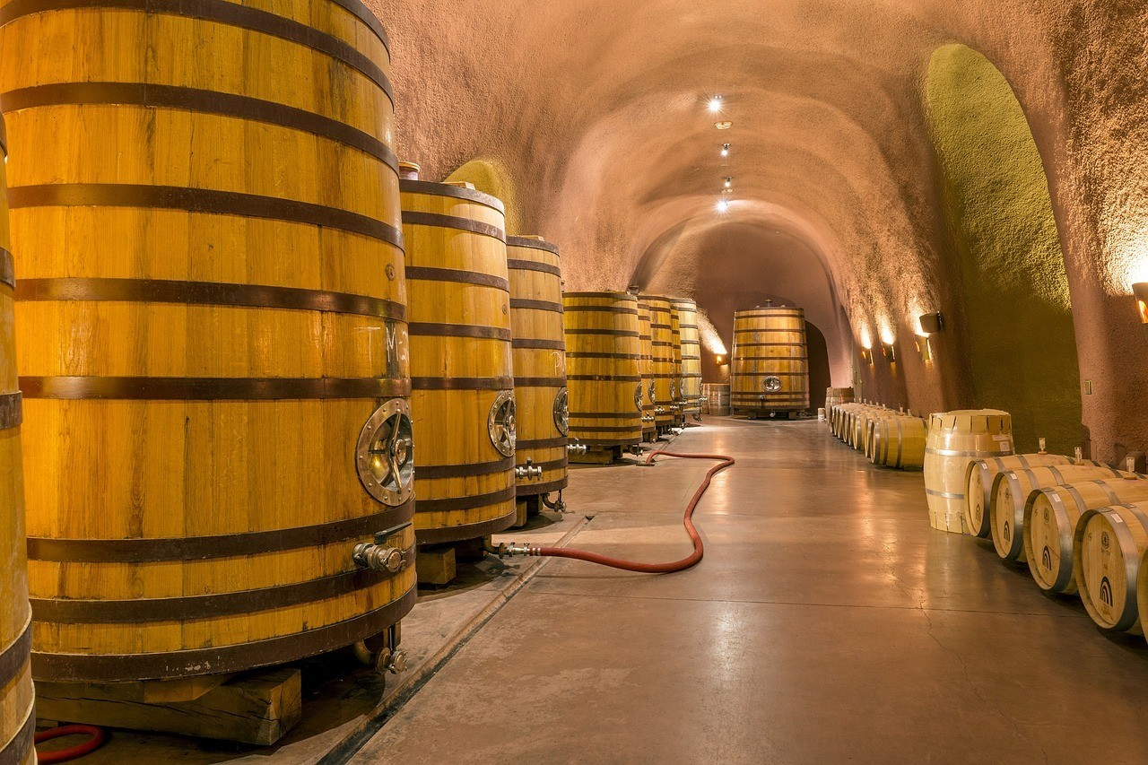 Spend the day tasting wine in the Napa Valley