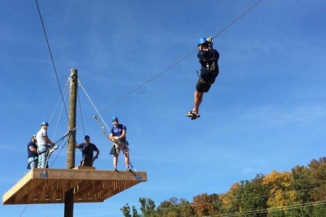 Zoom Through the Treetops on a Zip Line
