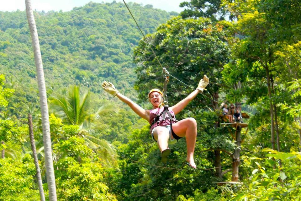 Tree Top Zipline