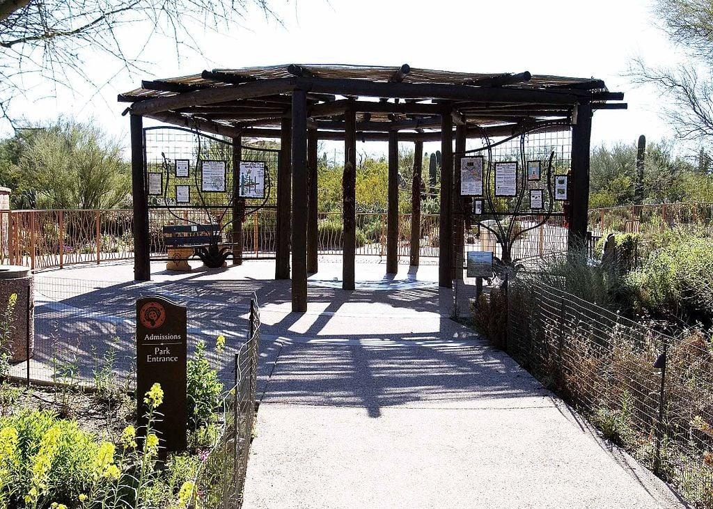 Tohono Chul Park, Tucson