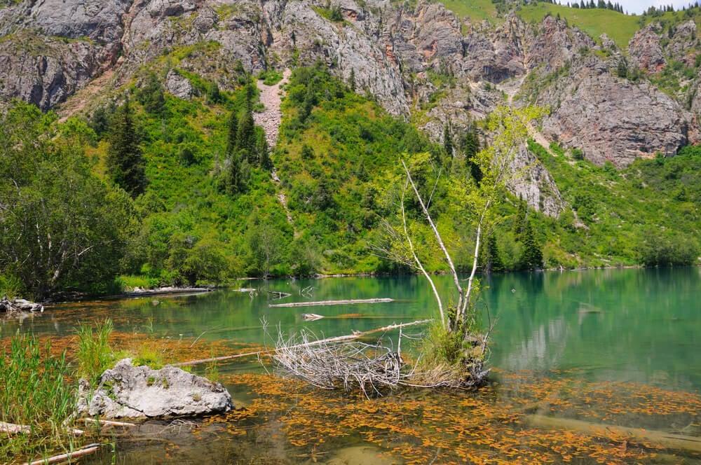 colors of sary chelek lake in kyrgyzstan