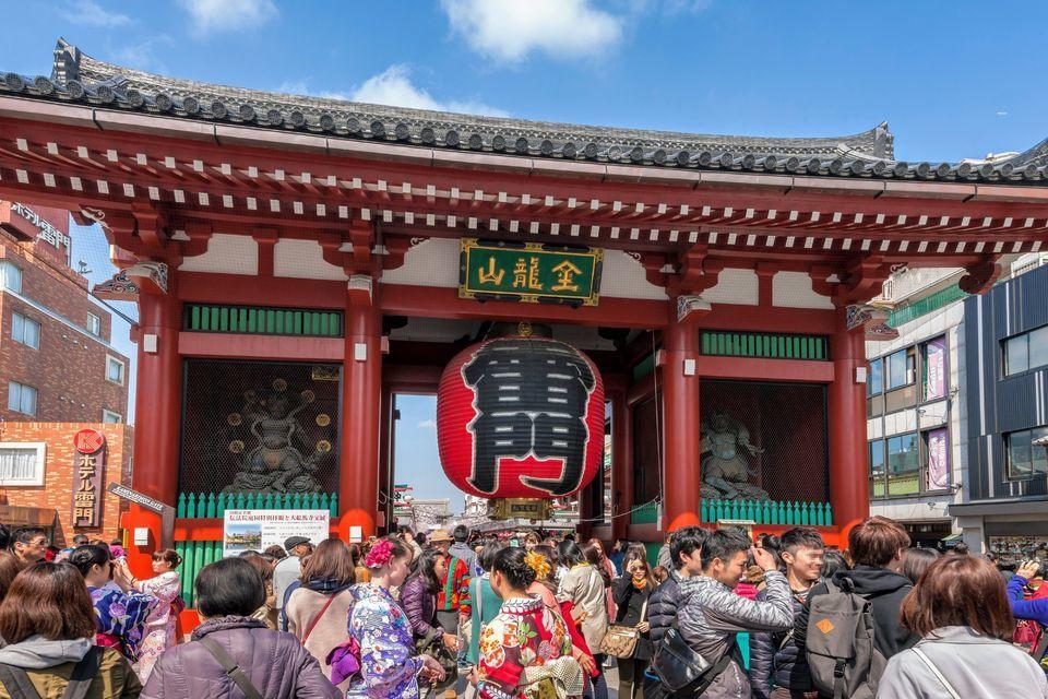 Tokyo Coach Tour and Bay Cruise