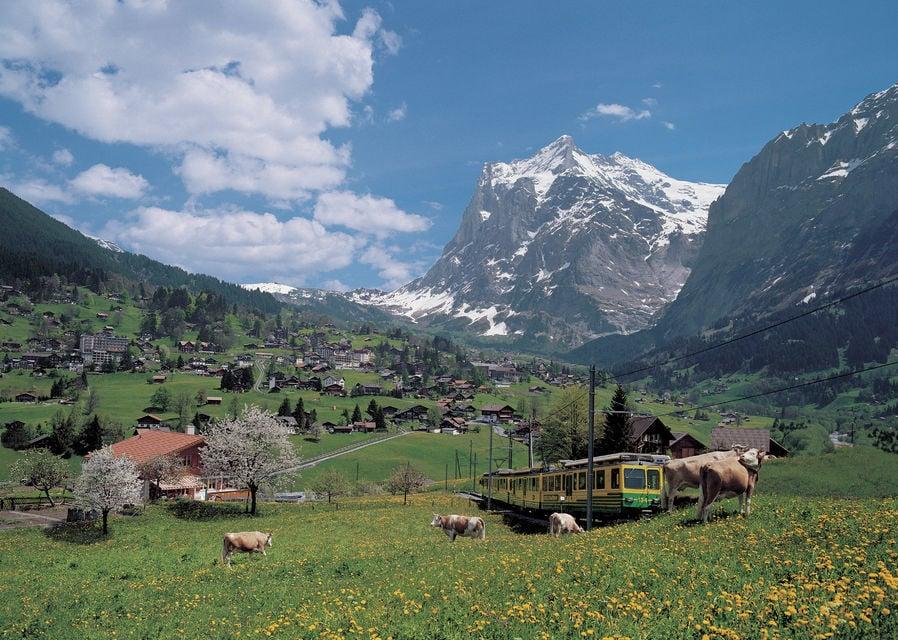 From Zurich: Day Trip to Grindelwald & Interlaken