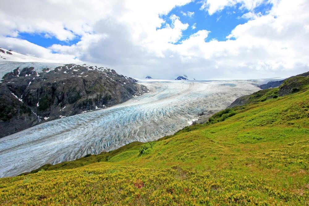 Kenai Fjords Anchorage