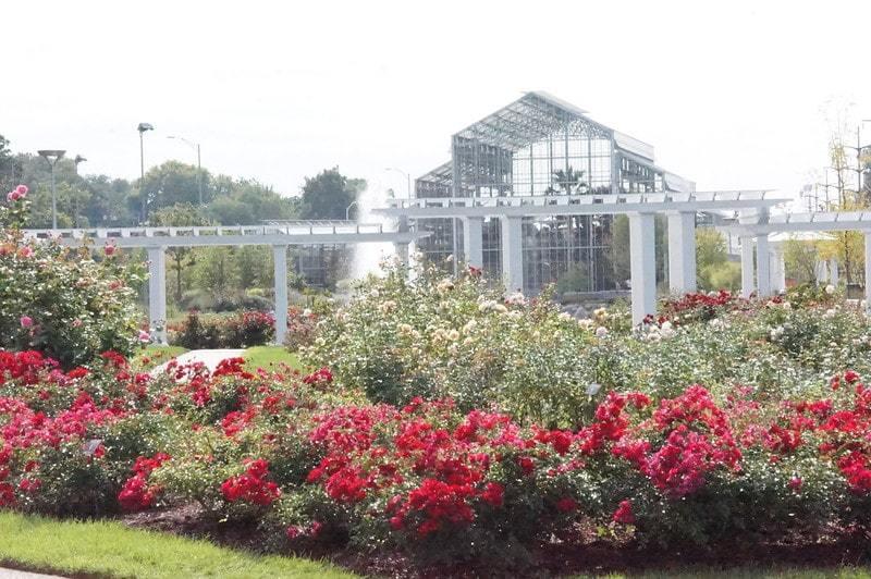 Nicholas Conservatory