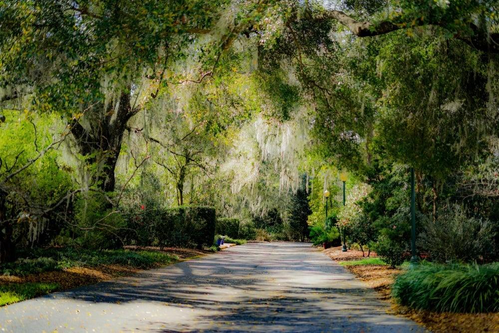 Harry P. Leu Gardens, Orlando