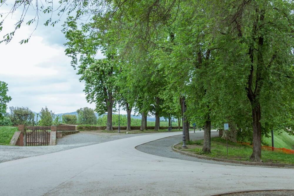 Pisa City Park