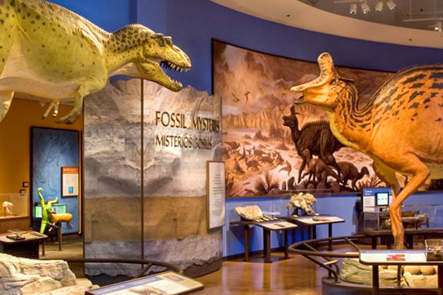 Natural History Museum, San Diego
