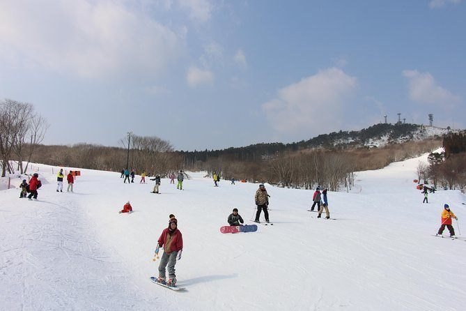 Mineyama Kogen Ski Day Tour