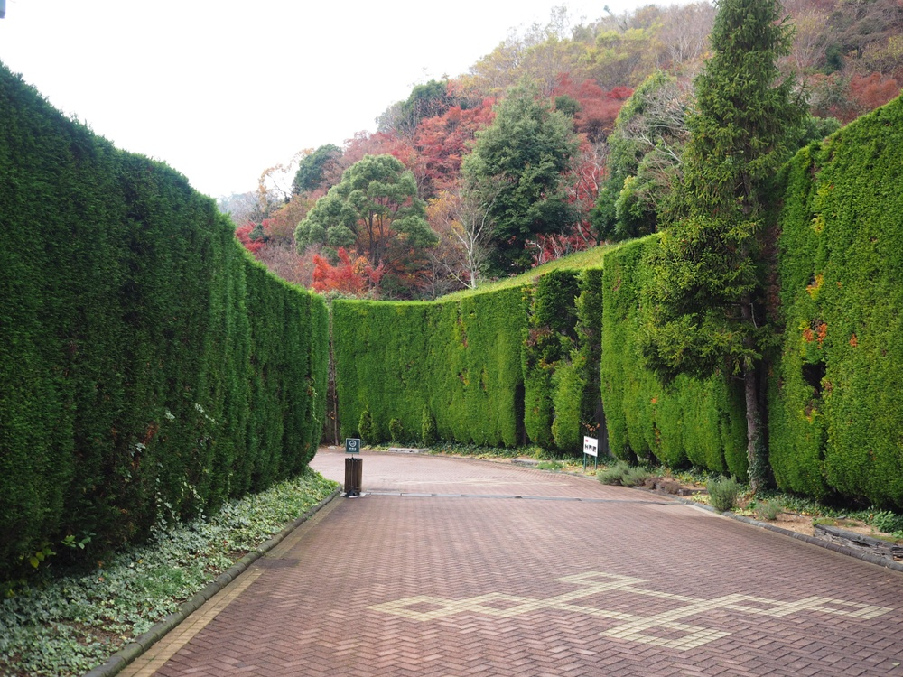 Visit Japan's Largest Herb Garden