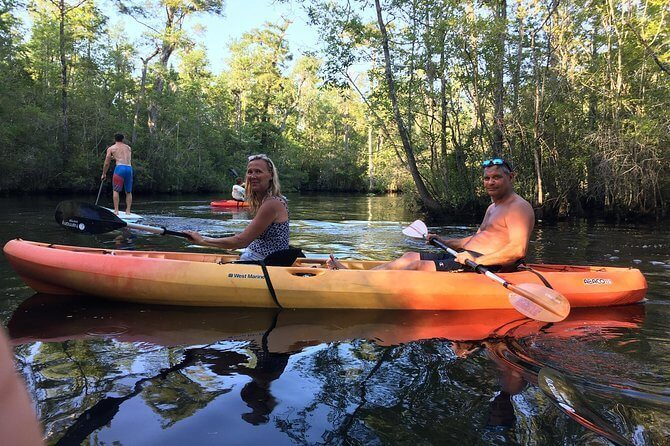 Enjoy a Scenic Kayak Ride