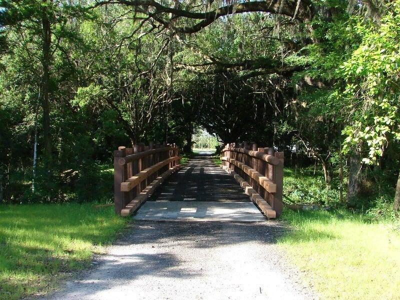 Lower Green Swamp Preserve