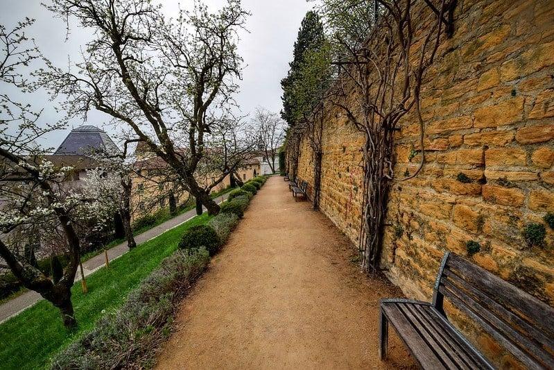 Soak up city views from the Parc des Hauteurs