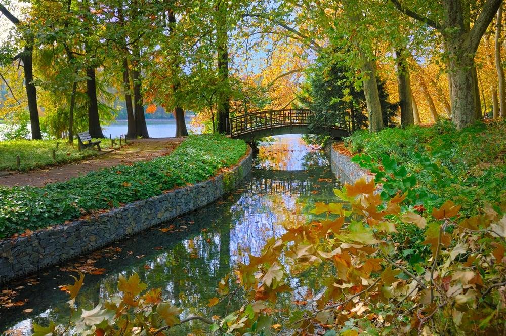 Go for a stroll around Parc de la Tête d'Or
