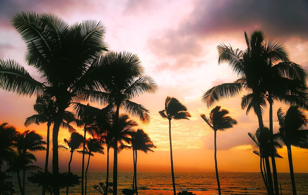 is hawaii expensive to visit