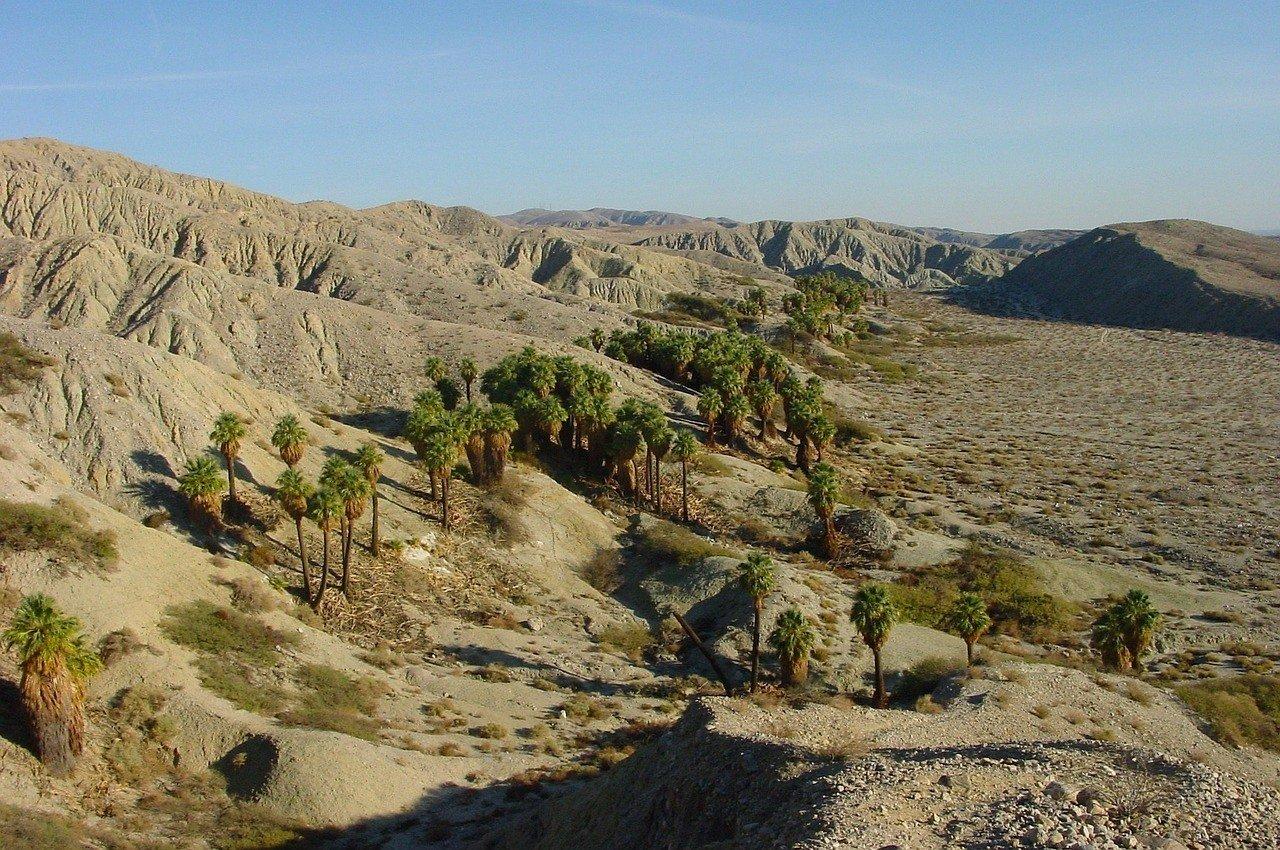 palm springs - palm desert