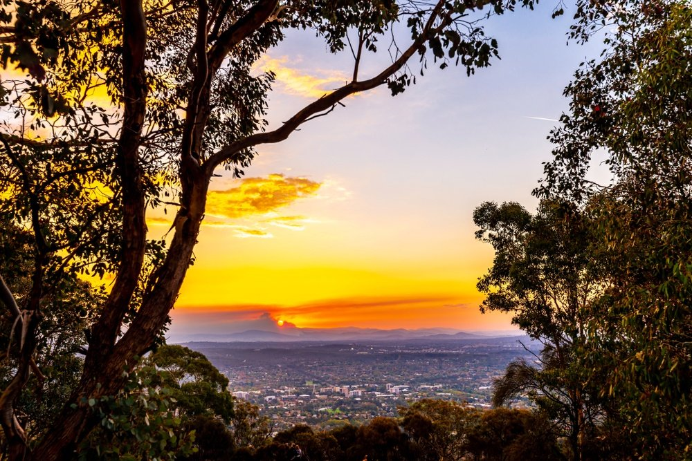 Mount Ainslie Lookout