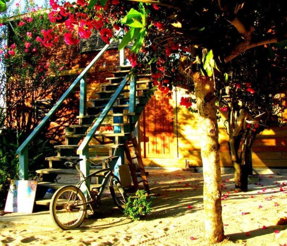 the best hostel in belize