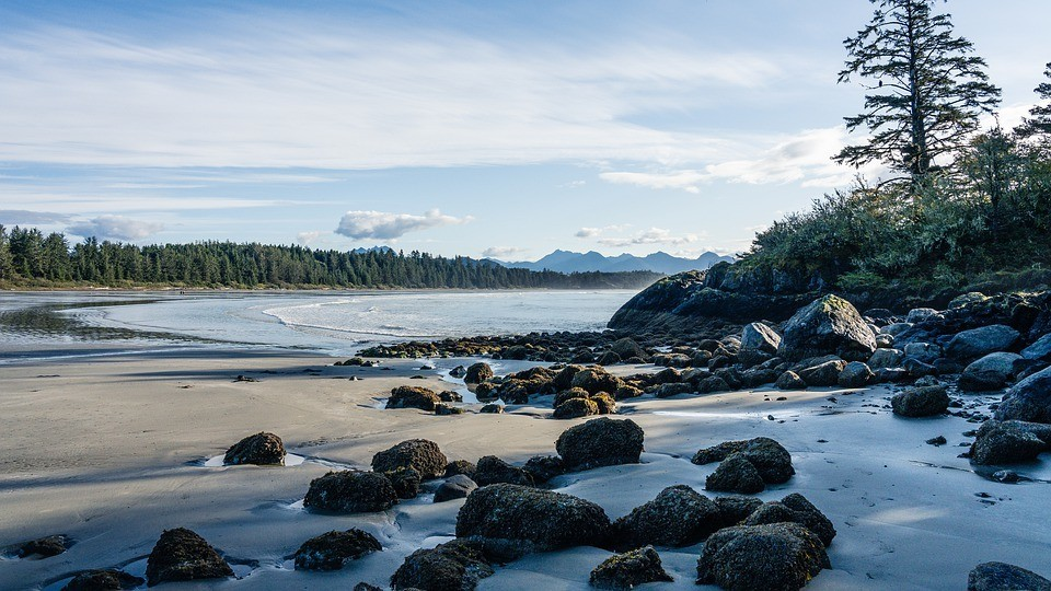 best hostels in tofino