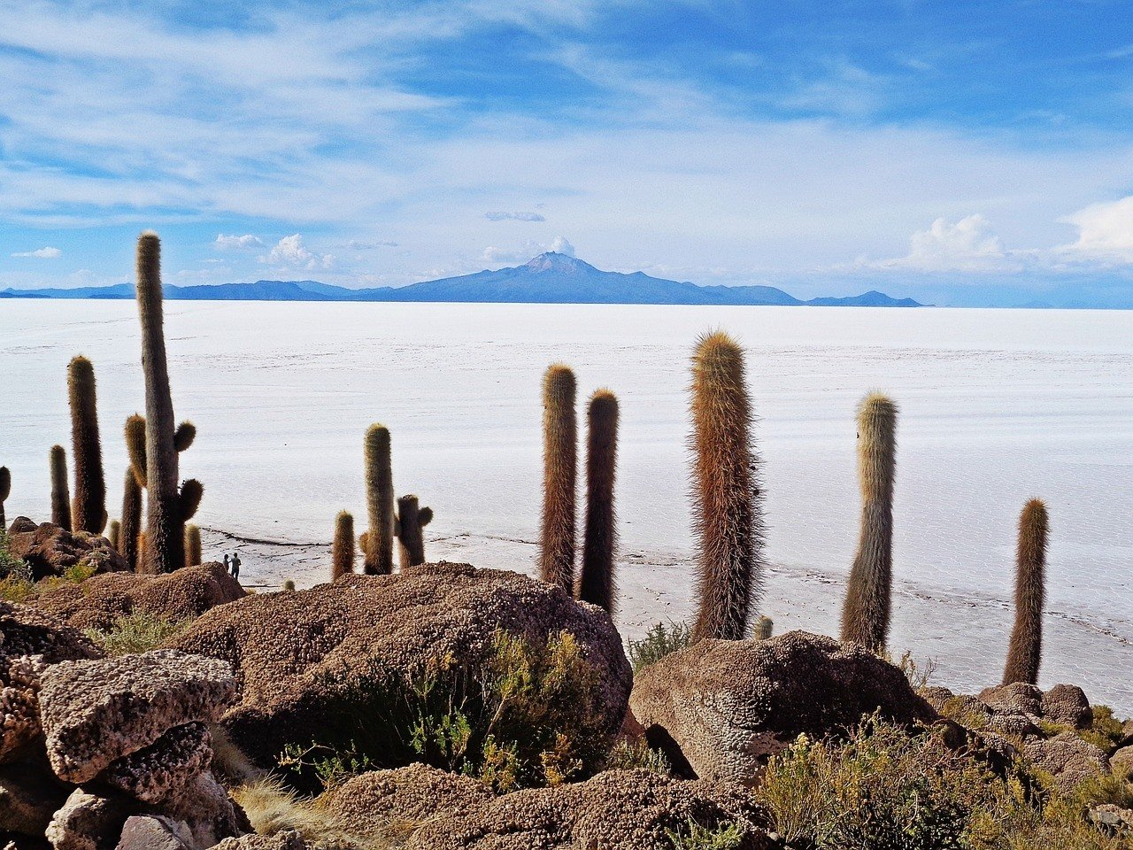 Best Hostels in Uyuni