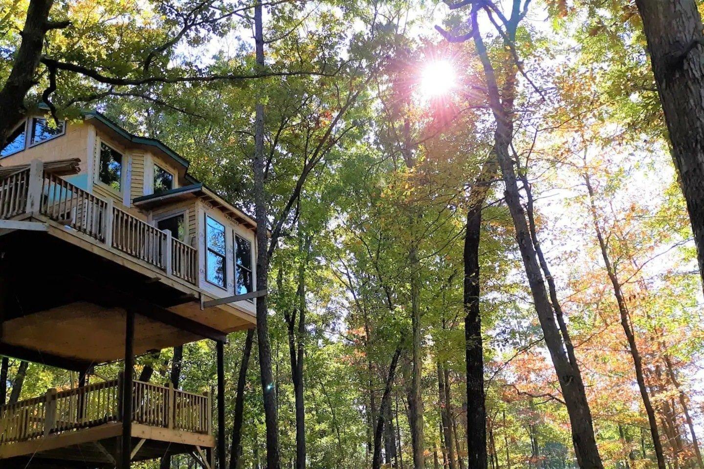 High Hope Spring Lake Ranch Treehouse
