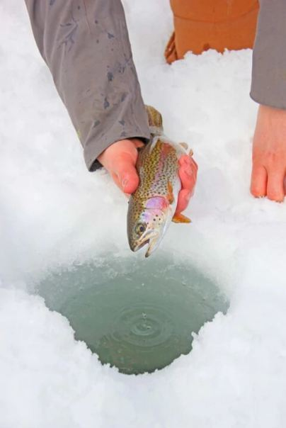 Ice Fishing With A Local Guide
