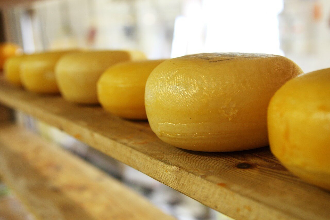 best dutch food gouda cheese