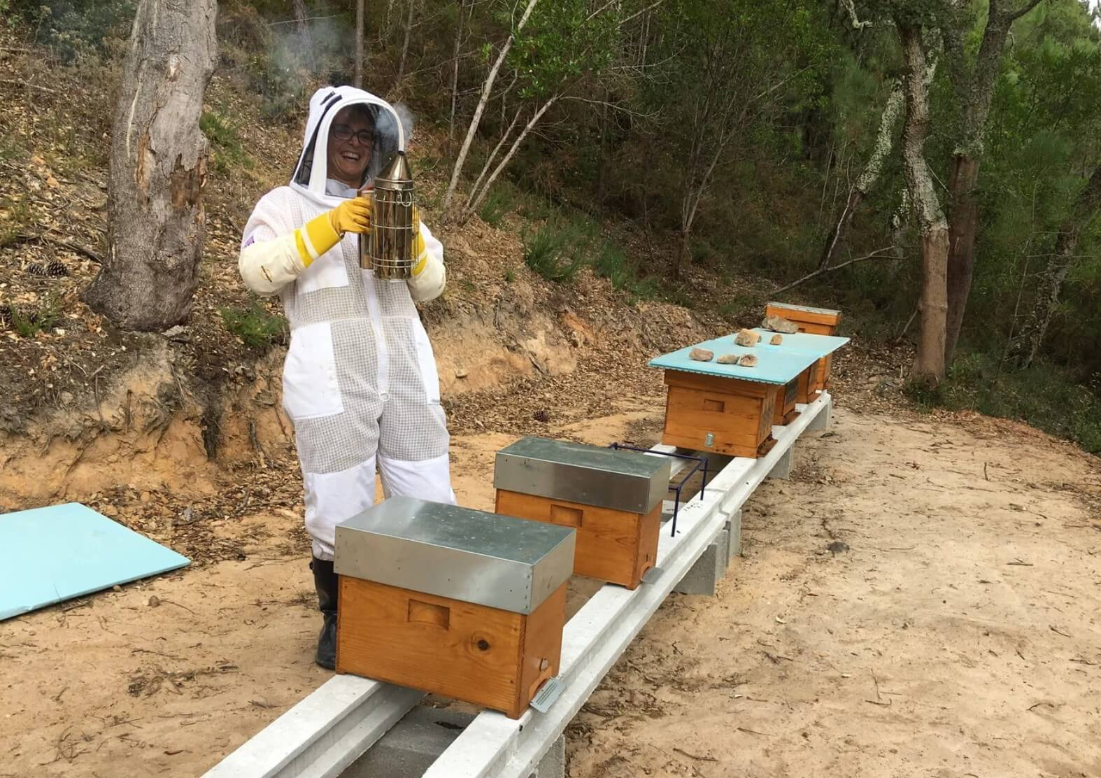 Meet Bees in Lisbon (with Lunch)