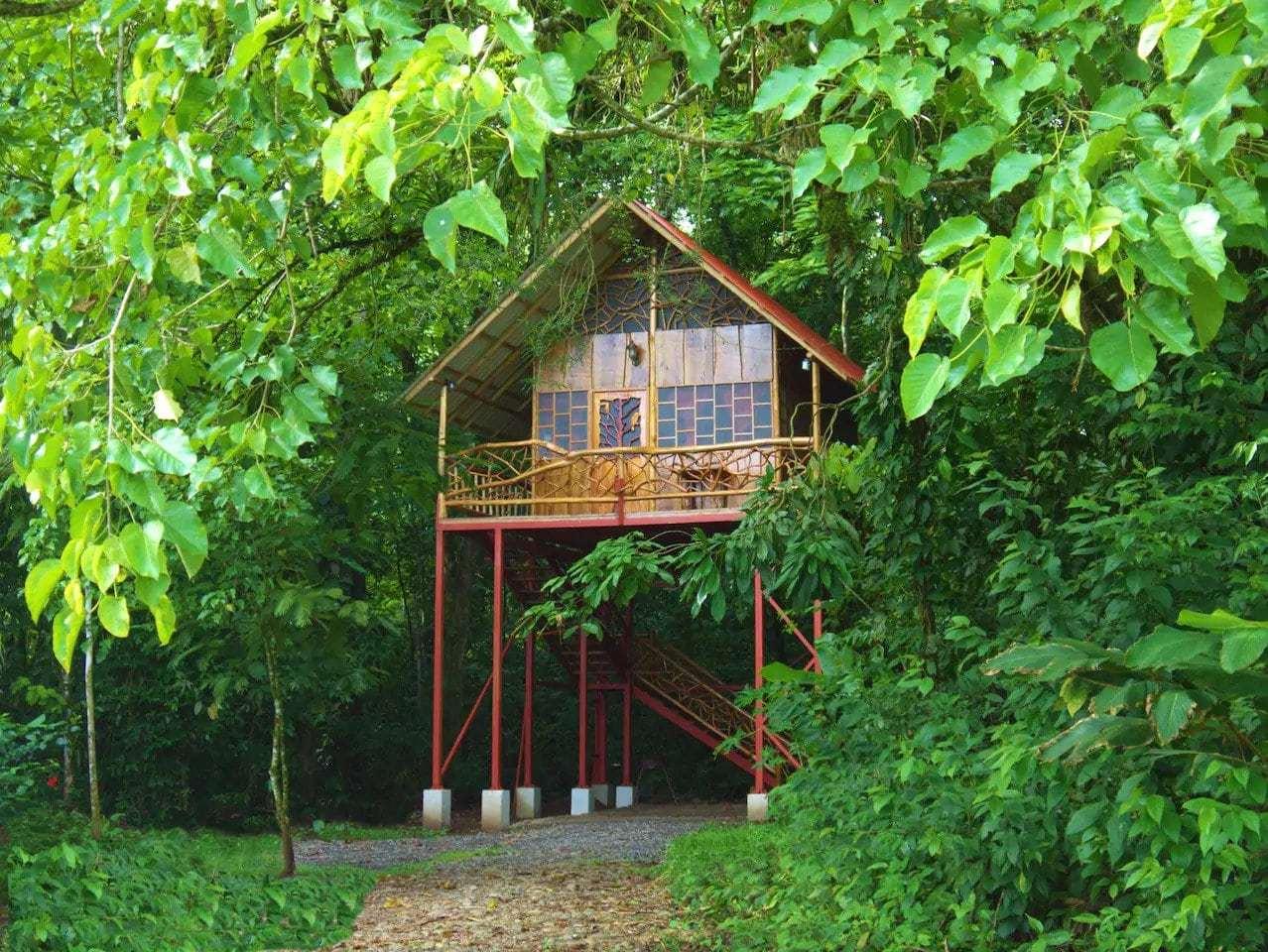 magical jungle treehouse