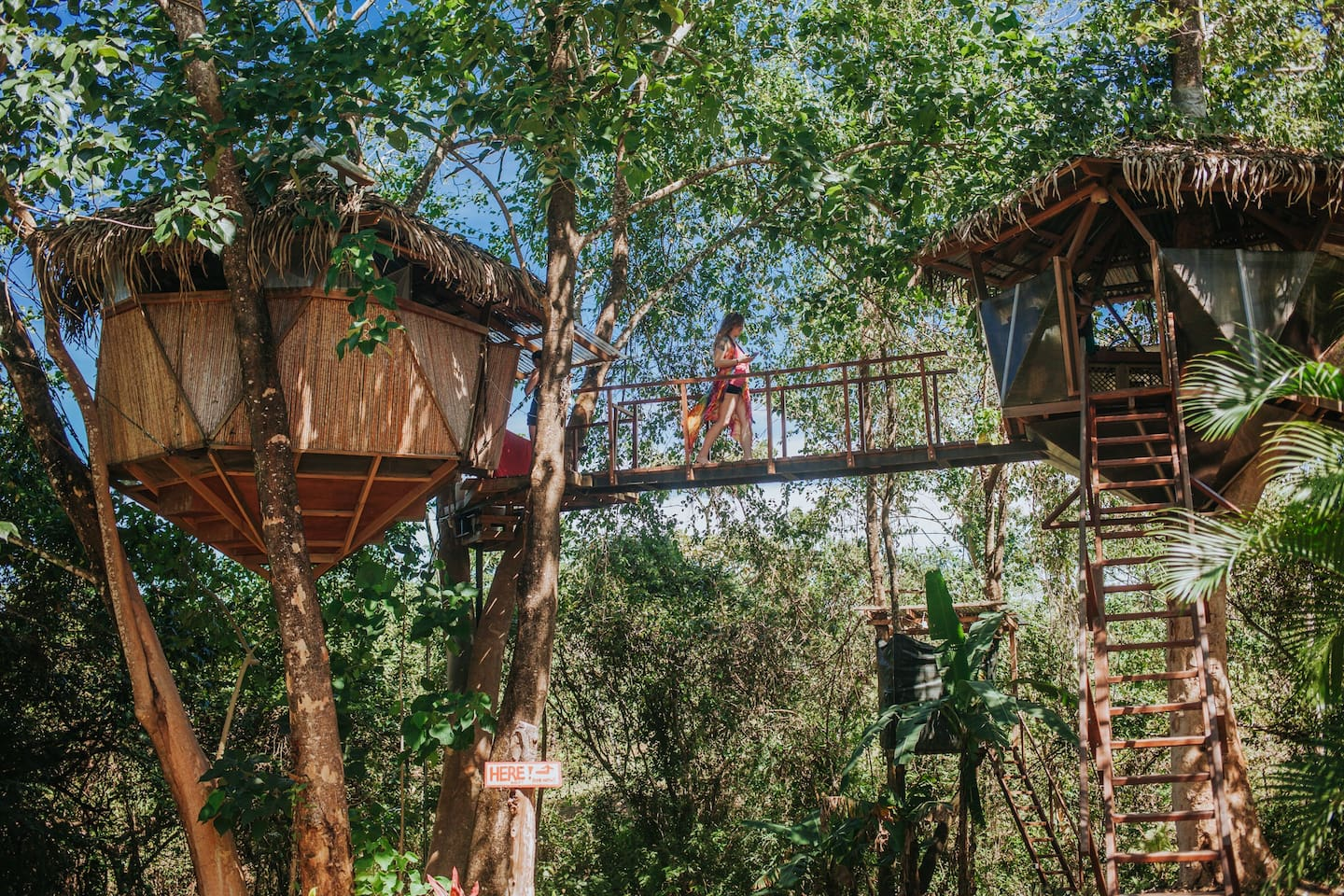 Sacred Geome Tree House in costa rica