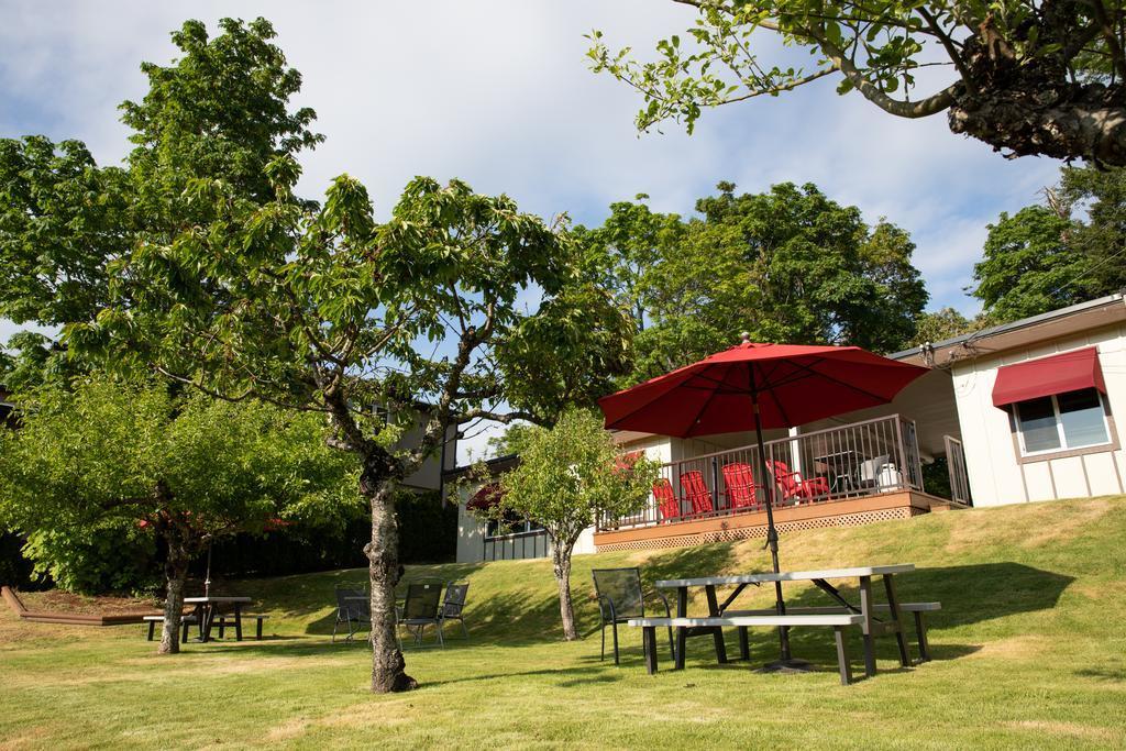 Cherry Tree Inn best hostels in Victoria