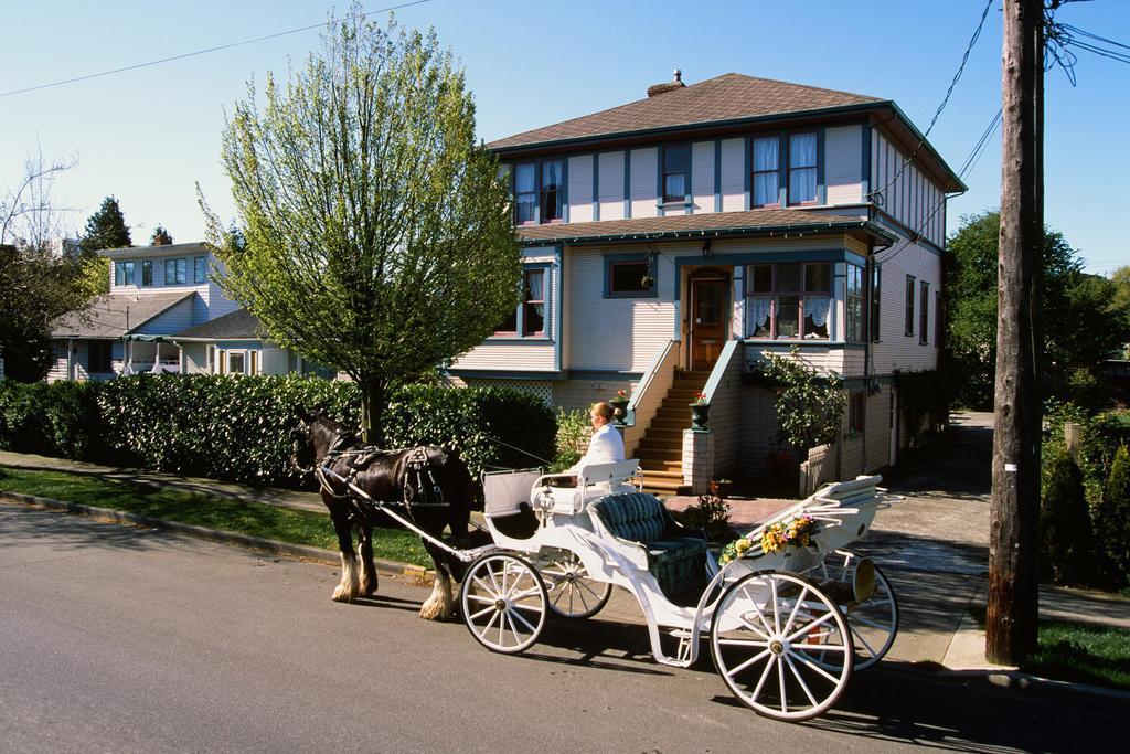 Marketa's Bed and Breakfast best hostels in Victoria