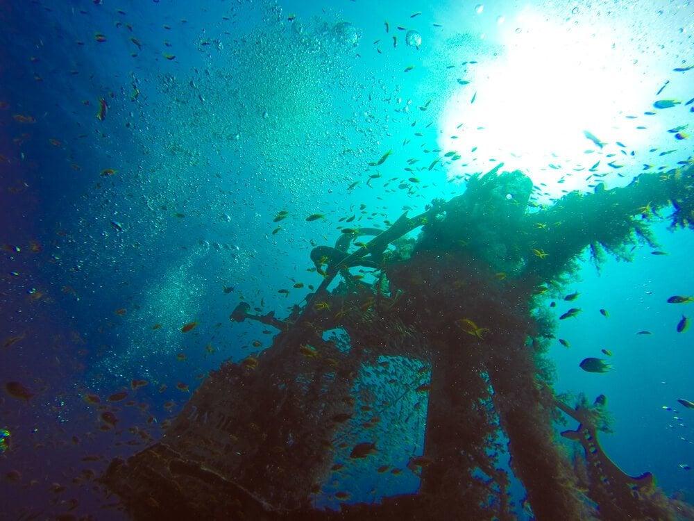 Yatush - best wreck diving in Eilat, Israel