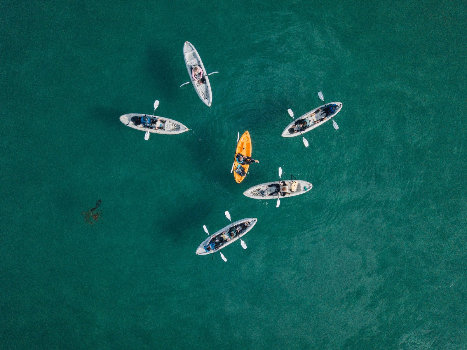 La Jolla Shores kayak