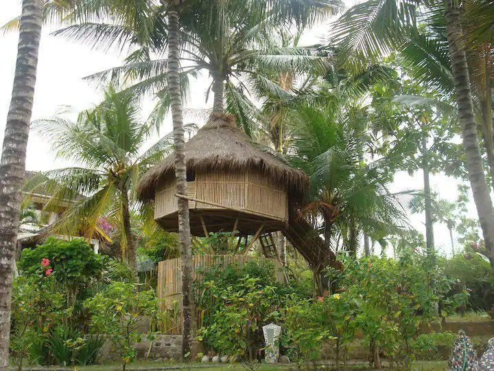 Romatic Coconut Tree Hut