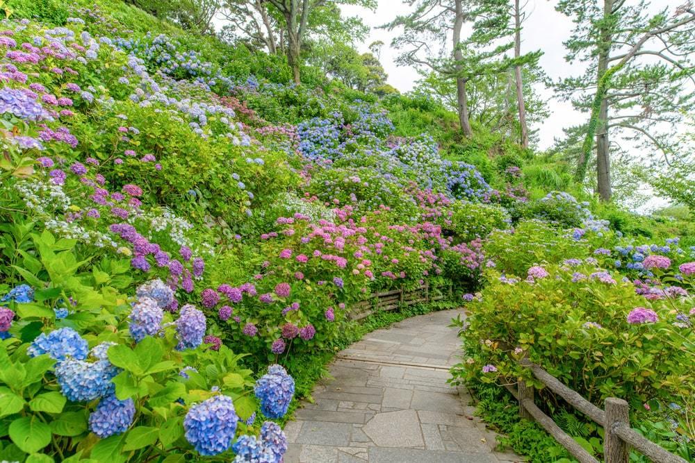 Shimoda Park Japan